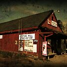 Foster's Mill Store by Patricia Montgomery