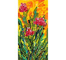 Spring Tulips, Triptych Panel 3 Photographic Print