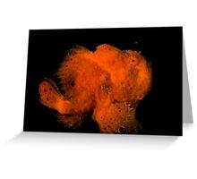 Orange Frogfish Greeting Card