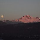 Beautiful Mount Baker by ibetannerz84