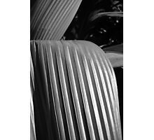 Palm Sculpture by Nature Photographic Print
