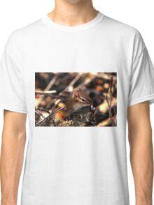 Baby Chipmunk Classic T-Shirt