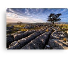 Limestone Country, Ribblesdale - The Yorkshire Dales Canvas Print