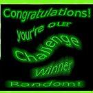 Challenge winner banner for Random by gbepsal