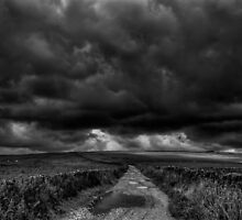 Storm Warning by Rory Garforth