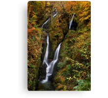 Stock Ghyll Force - The Lake District Canvas Print