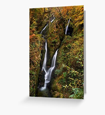 Stock Ghyll Force - The Lake District Greeting Card