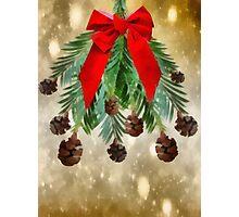 Pinecone mistletoe, Season greetings Photographic Print
