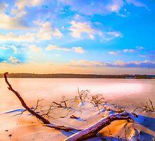 Winter landscape near a pond by Hujer
