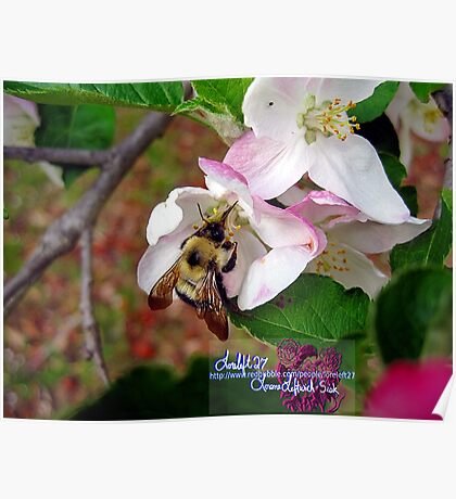 bumble bee in bliss Poster