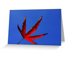 vermillion leaf Greeting Card
