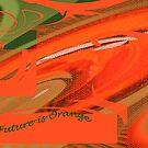 The future is Orange by Merice  Ewart-Marshall - LFA