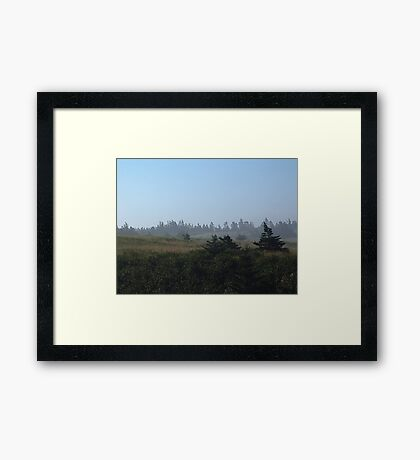 A Walk in the Morning Mists Framed Print