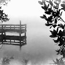Foggy Morn on The St Lucie River by Noble Upchurch