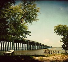 Bay Bridge by Jonicool