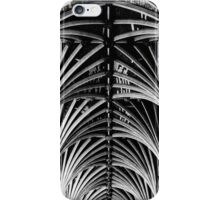 Vaulted Exeter Cathedral iPhone Case/Skin
