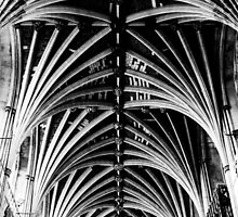 Vaulted Exeter Cathedral by William Rottenburg