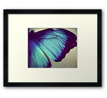 Black and Blue Wing Framed Print