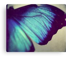 Black and Blue Wing Canvas Print