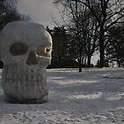 Morning Light Skull Sculpture  by cookarelli