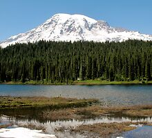 Reflection Lake - Mt. Rainier National Park, WA by Britland Tracy