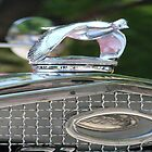 Classic Ford Hood Ornament by tkrosevear