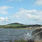 The Beach at Port William, Scotland by sarnia2