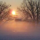 Misty Winter Morning at Sunrise by cuttincwgrl