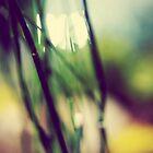 Melting In by ameliakayphotog