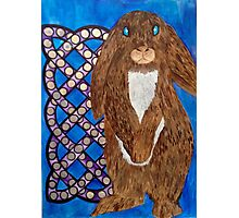 Celtic Bunny Photographic Print