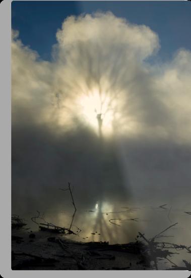 Steam Shadows by Michael Treloar