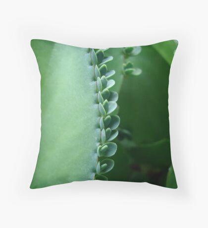 Butterfly Succulent Throw Pillow