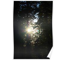 Let the Light Shine Through Poster