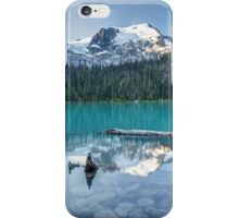 Natural Beautiful British Columbia iPhone Case/Skin