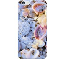 Seashells at Sunset Have Great Colors! iPhone Case/Skin