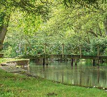 A wooden bridge in a garden by Judi Lion