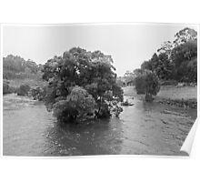 Rain and flood, Curdies River, Victoria, Australia Poster