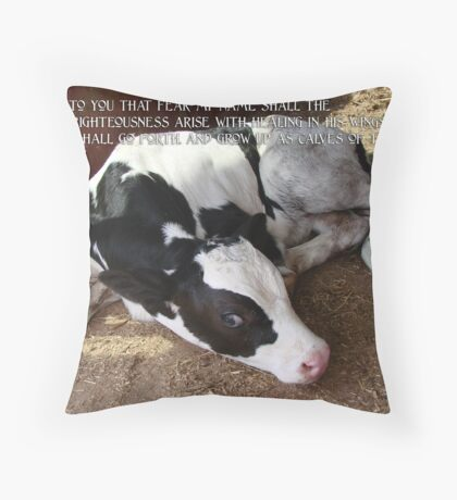 Calves of The Stall Throw Pillow