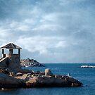 Rockport by Lydia Marano