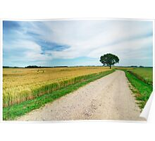 Crop Fields Poster