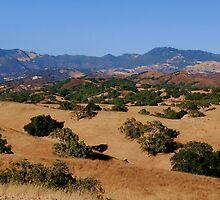 Santa Ynez Valley and Mountains by Renee D. Miranda