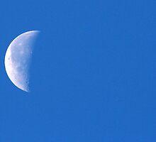 Half Moon Rising by RichImage