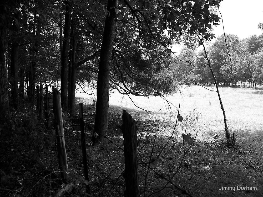 Fenced Field by Jimmy Durham