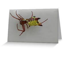 A What in the WORLD is it spider :)) Greeting Card