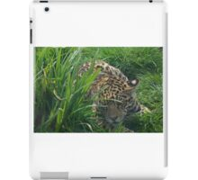 Bet you can't find me... iPad Case/Skin