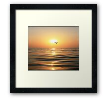 Sea, sunset and seagull Framed Print