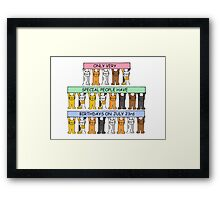 Cats celebrating birthdays on July 23rd. Framed Print
