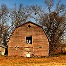 ABANDONED!!! by Larry Trupp