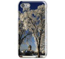 Breathtaking Beauty iPhone Case/Skin