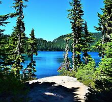 Mowich Lake by BackWoodsPhotos